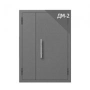 Дверь металлическая техническая ДМ-2 (двуполая без остекления)